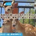 奈良県の引越しは大手で安心できる人気の引越し業者から選ぶと安心感が違う